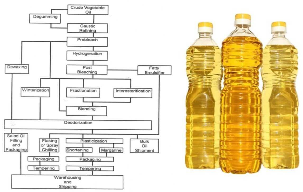 How vegetable oils are processed
